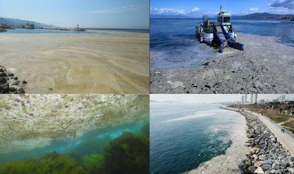 Marmara Denizi Müsilaj Sorununun Sebepleri, Değerlendirmesi ve Çözüm Önerileri class=