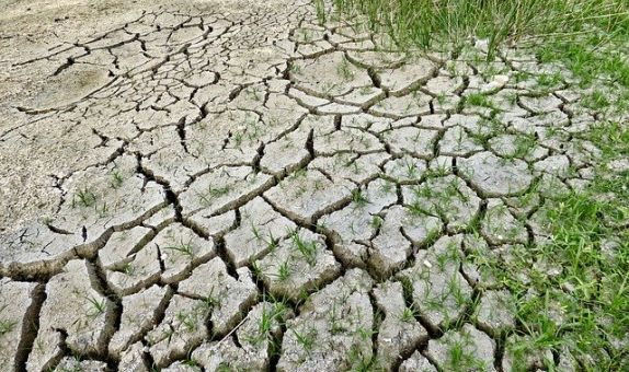 """""""İklim Değişikliği Uyum Eyleminin Güçlendirilmesi Projesi""""nde Başvuru Süresi Uzatıldı"""